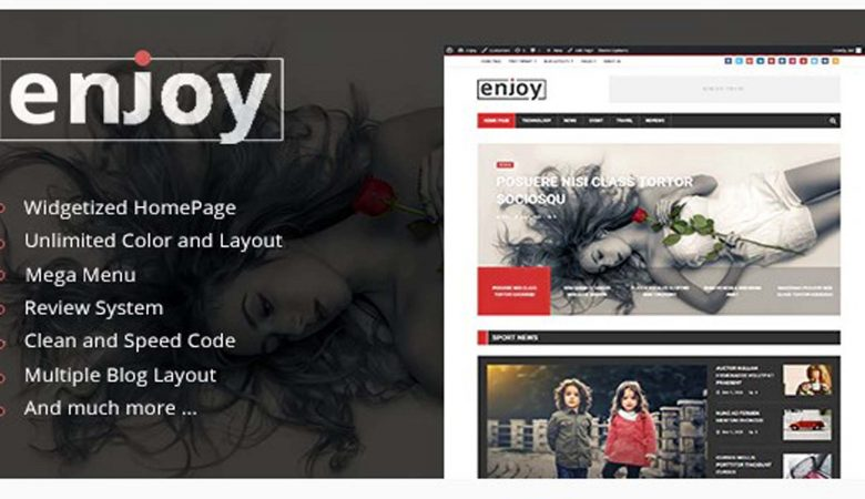 WordPress Magazine and Blog Enjoy Theme Download
